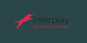 BRANDING FOR INTERPLAY-K9
